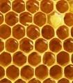 Miel en rayon AB