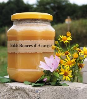 miel de ronces AB